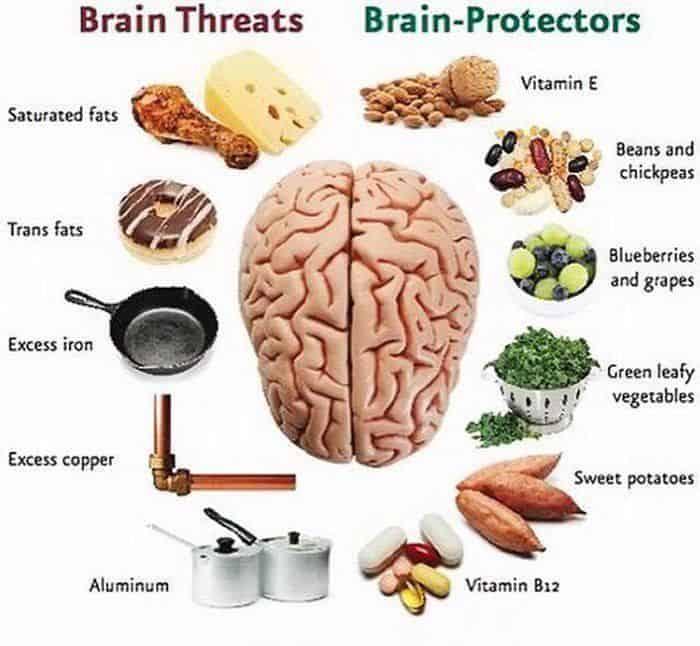 brain protectors
